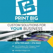 Custom-Solutions-for-your-Business.-Get-it-done-the-right