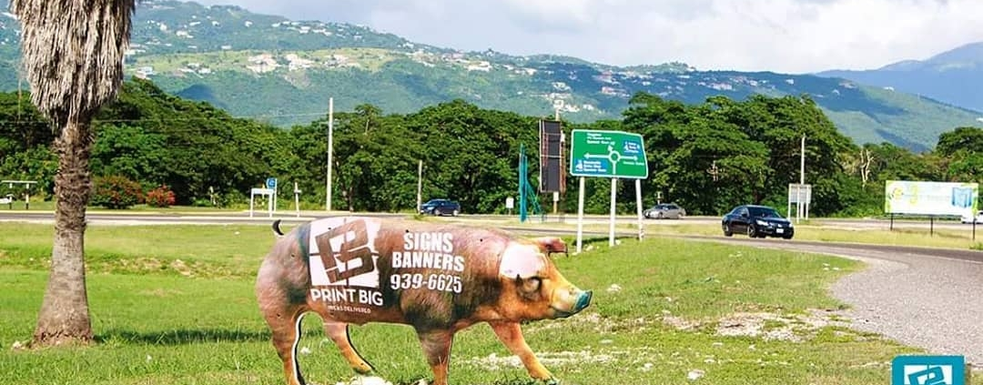 please-be-on-the-lookout-for-animals-crossing...-printbig-ideadelivered